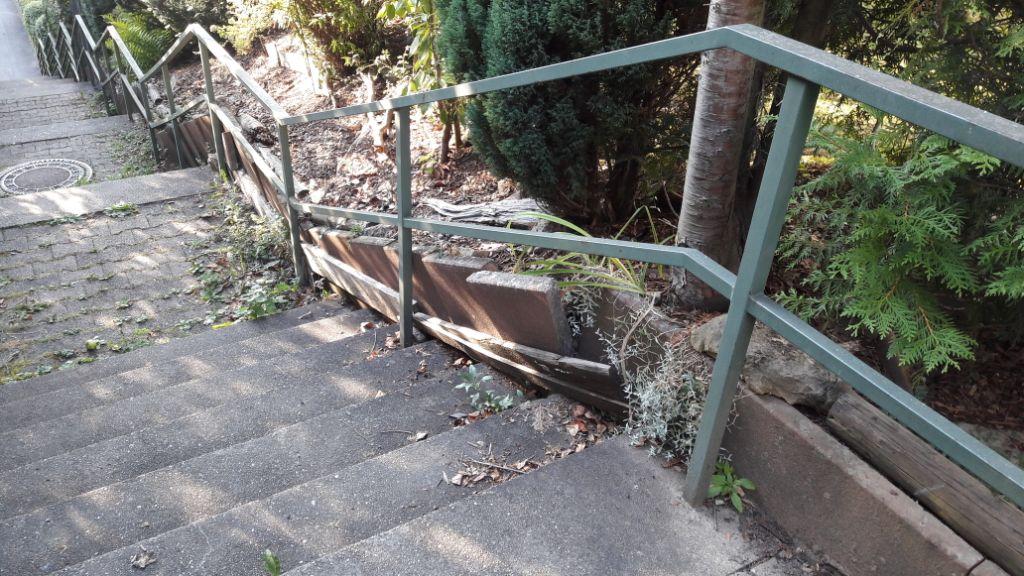Schanskorf trap
